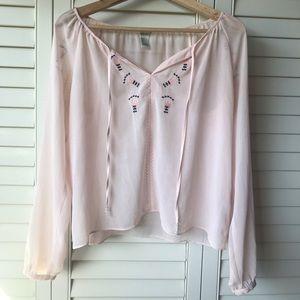 Light Pink Thin Sheer Blouse